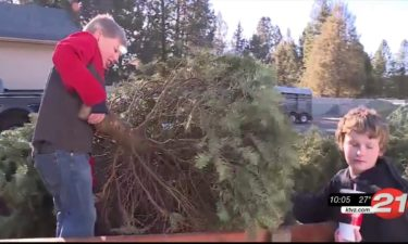 Scouts recycle Christmas trees
