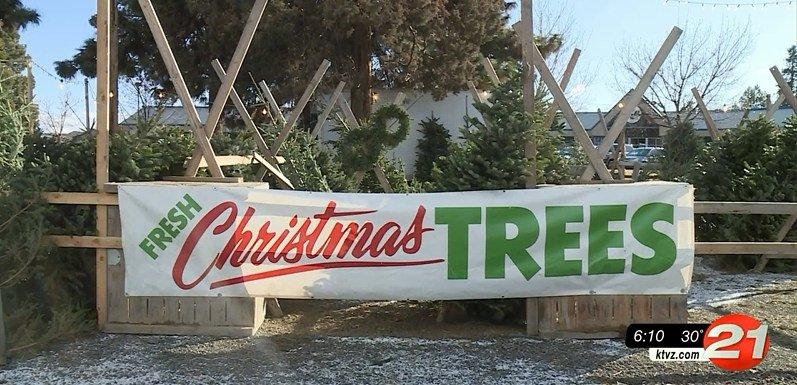 Bend Christmas tree lot