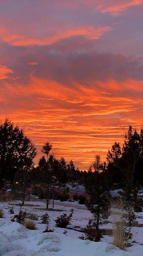 Sunrise Brian Diggers 1206