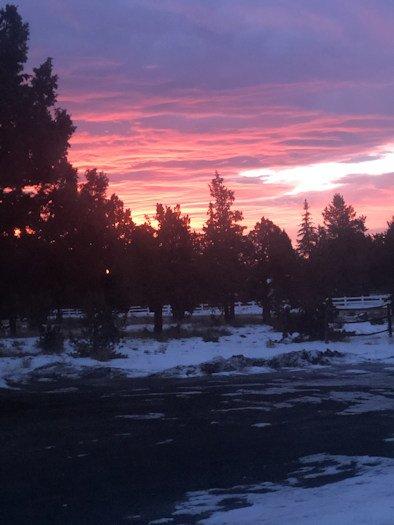 Sunrise Emma Dooley 1206
