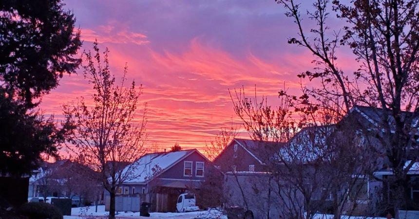 Sunrise Marcia Covert1206