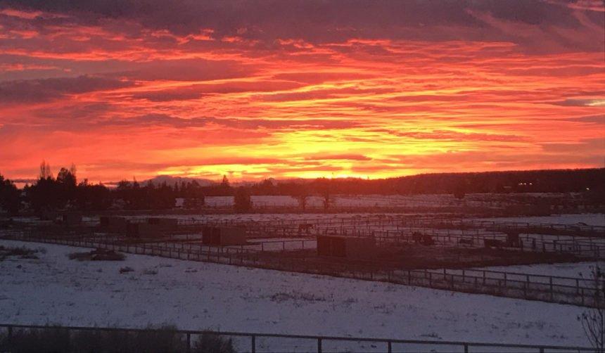 Sunrise Tumalo Colleen Annichiarico1206