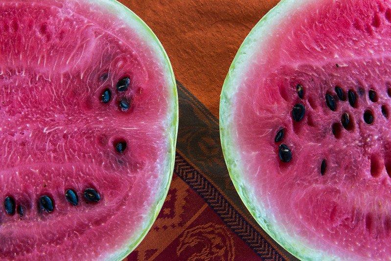 Watermelon Lynn Ketchum OSU