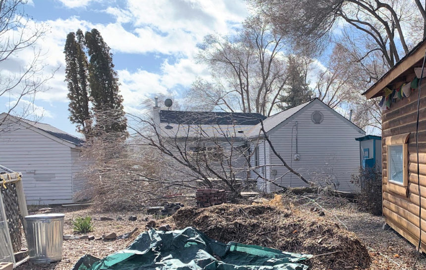 Prineville backyard downed tree Brent Bunch 2-23