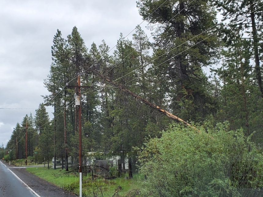 Three Rivers power pole snapped Johnny Mooney 530