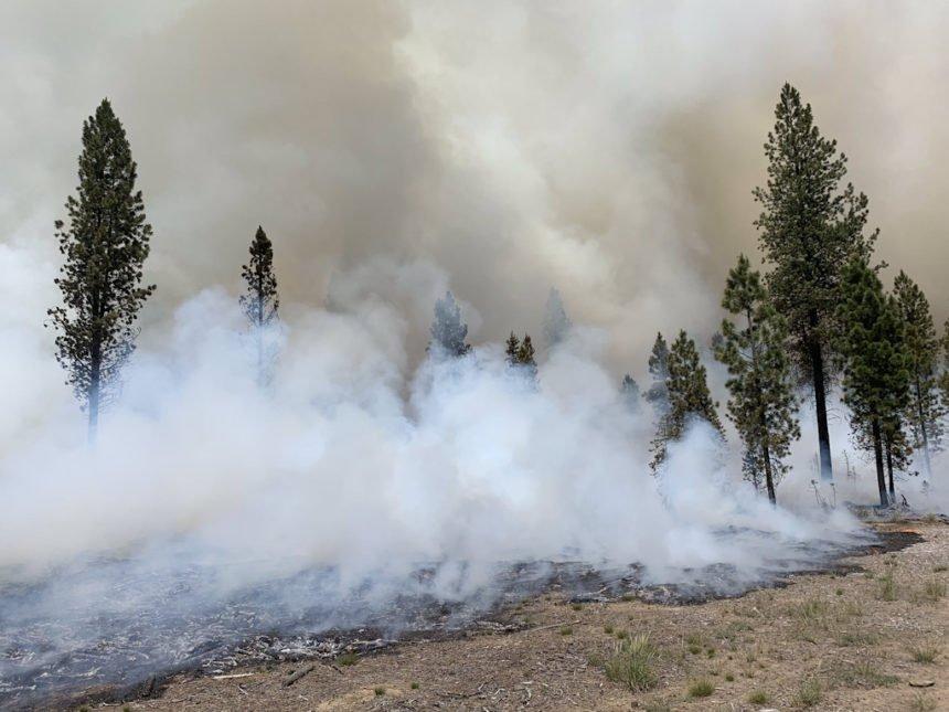Paulina Lake Fire COIDC 75-1