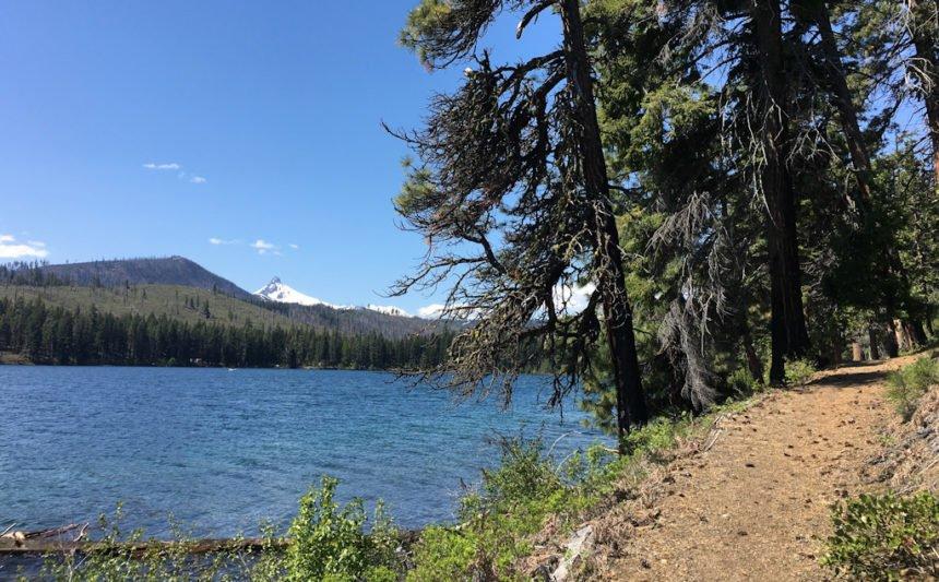 Suttle Lake USFS