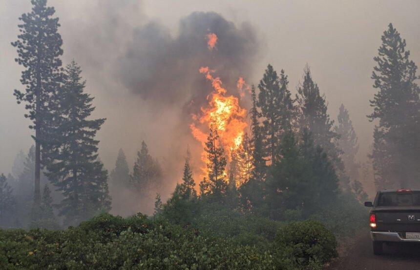 Green Ridge Fire 824