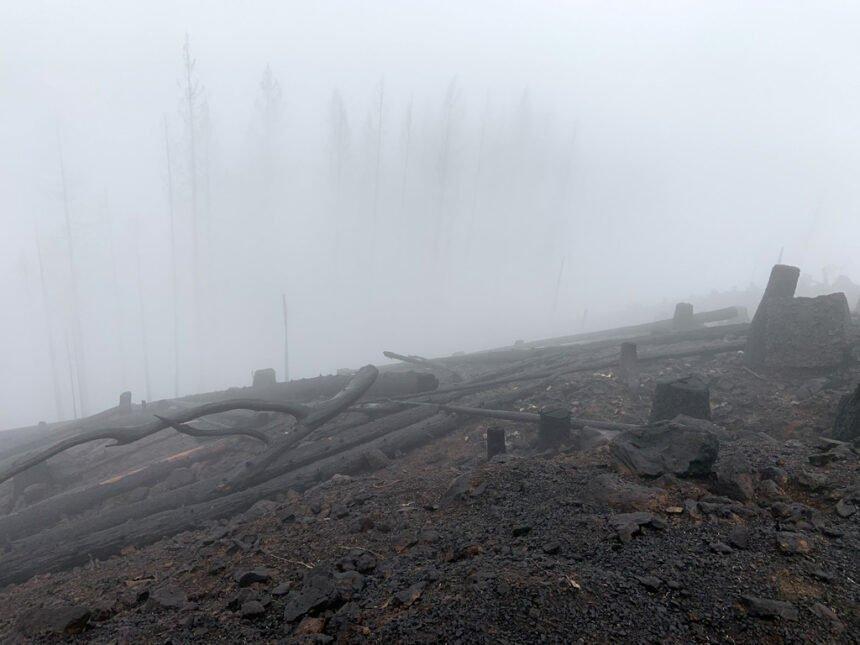 Fire-blackened Mt. Hagan Lane County OEM