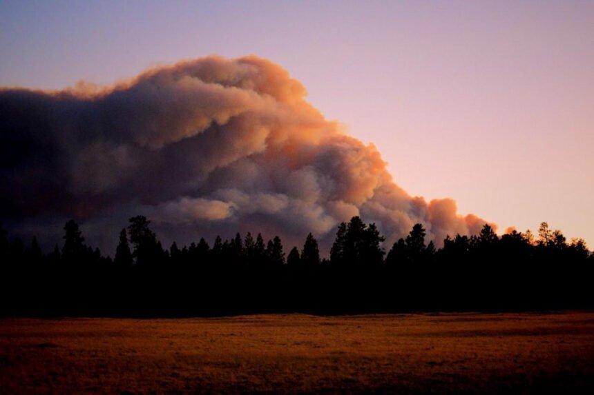 Lionshead Fire 919 InciWeb