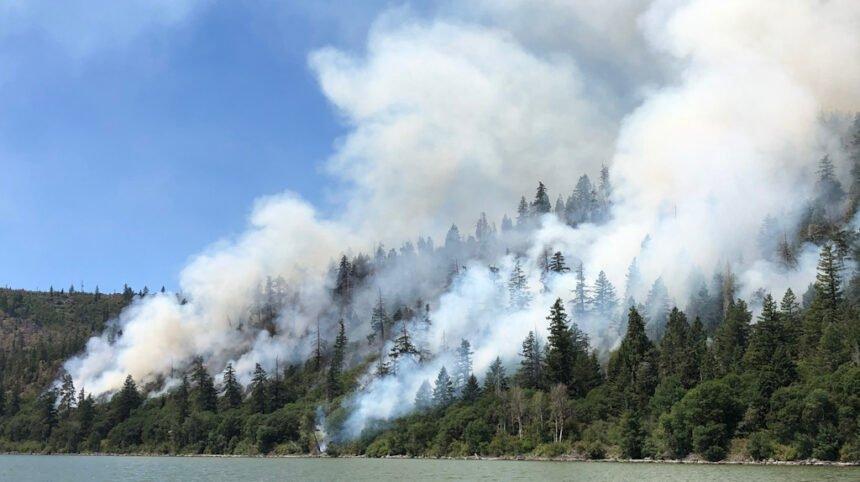 Controlled burn Oregon Dept. of Forestry