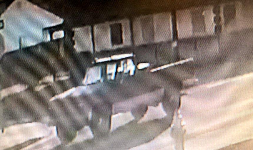 Pickup of interest fatal dog attack Redmond PD 1111-1
