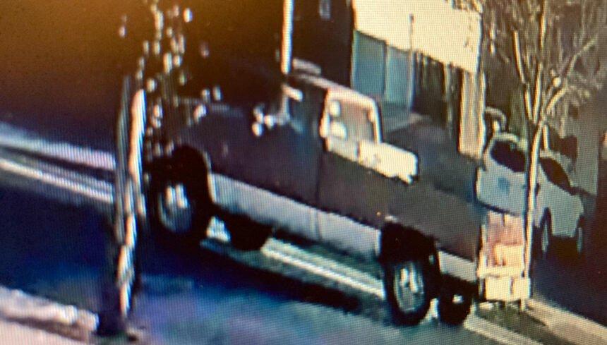 Pickup of interest Redmond fatal dog attack RPD 1111-2