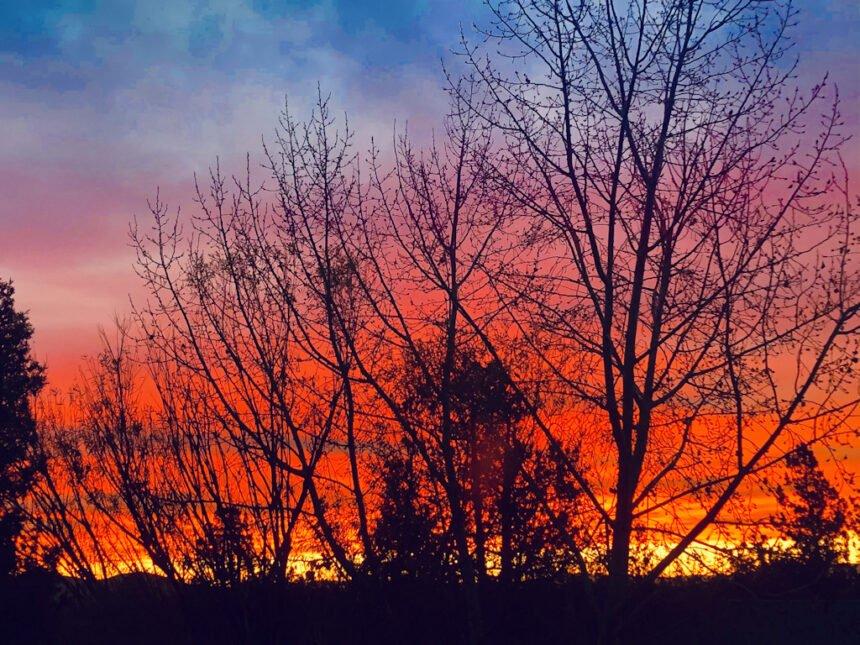 Tumalo backyard sunrise Lisa Williams 1112