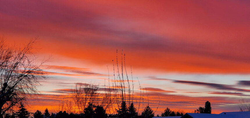 Redmond sunrise Nancy Pickert 124