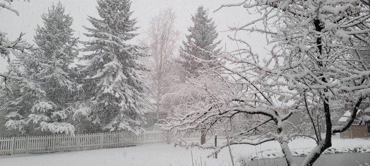 Snow Stonegate Linda Thornton 122