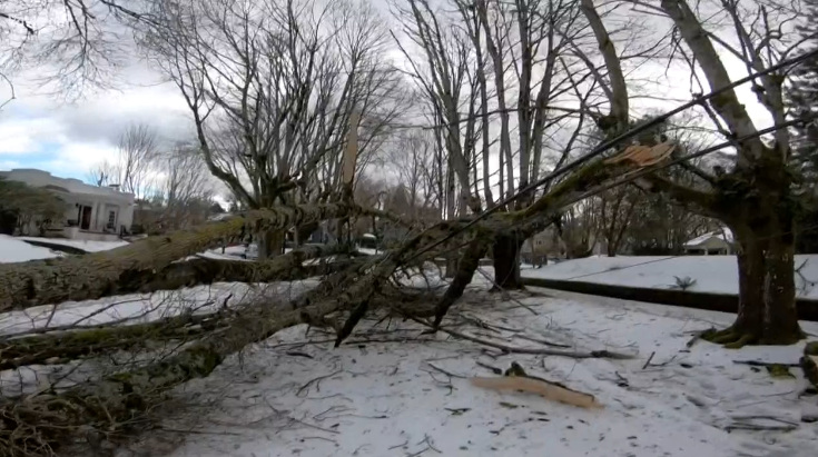 Snow, ice downed trees, power lines in Portland area