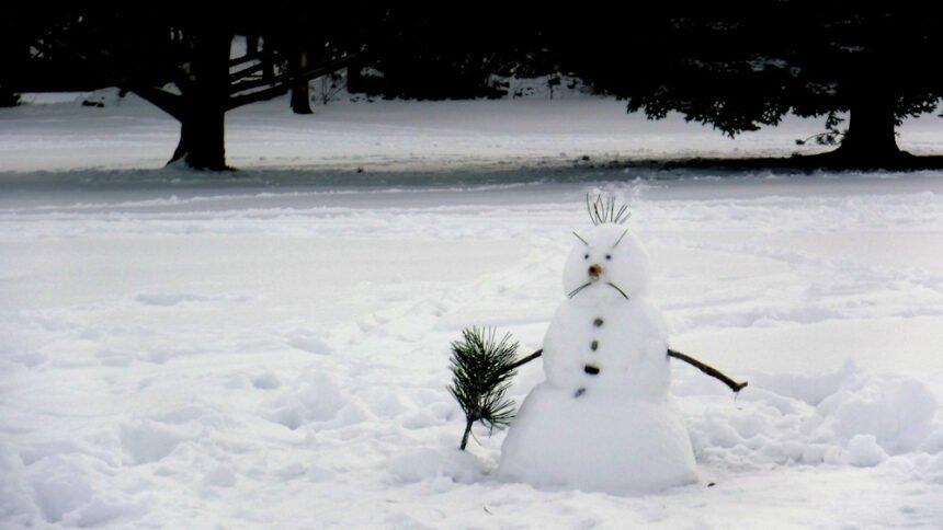 Unhappy snowman Redmond Sam Johnson Park Larry Cole