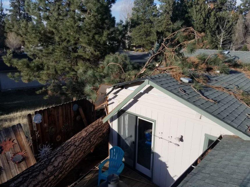 SE Bend tree damages house Aleshia Hasha