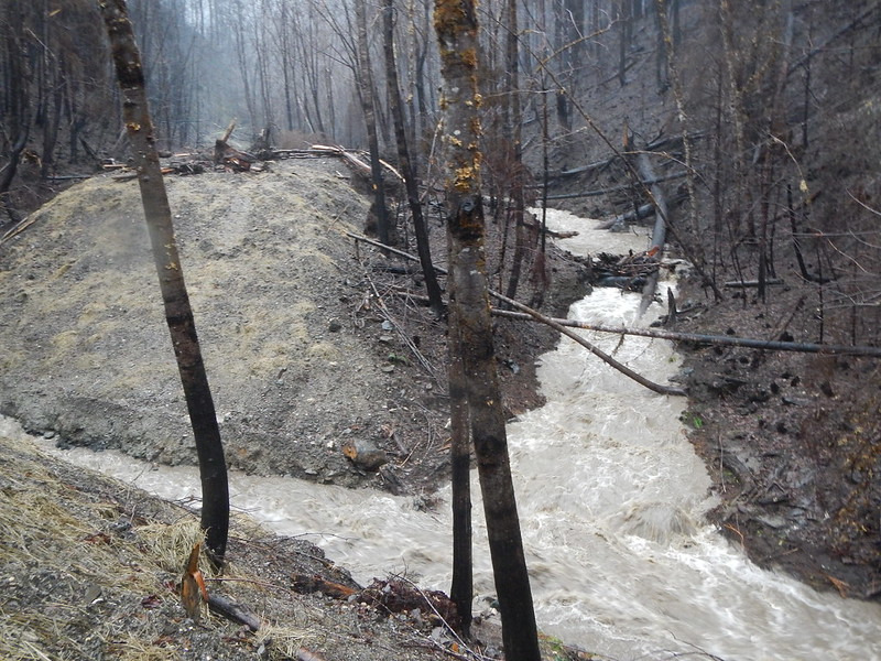 Kevin Bladon of the OSU College of Forestry has been studying wildfires' effect on streams since the early 2000s. Pictured is Stouts Creek southeast of Roseburg