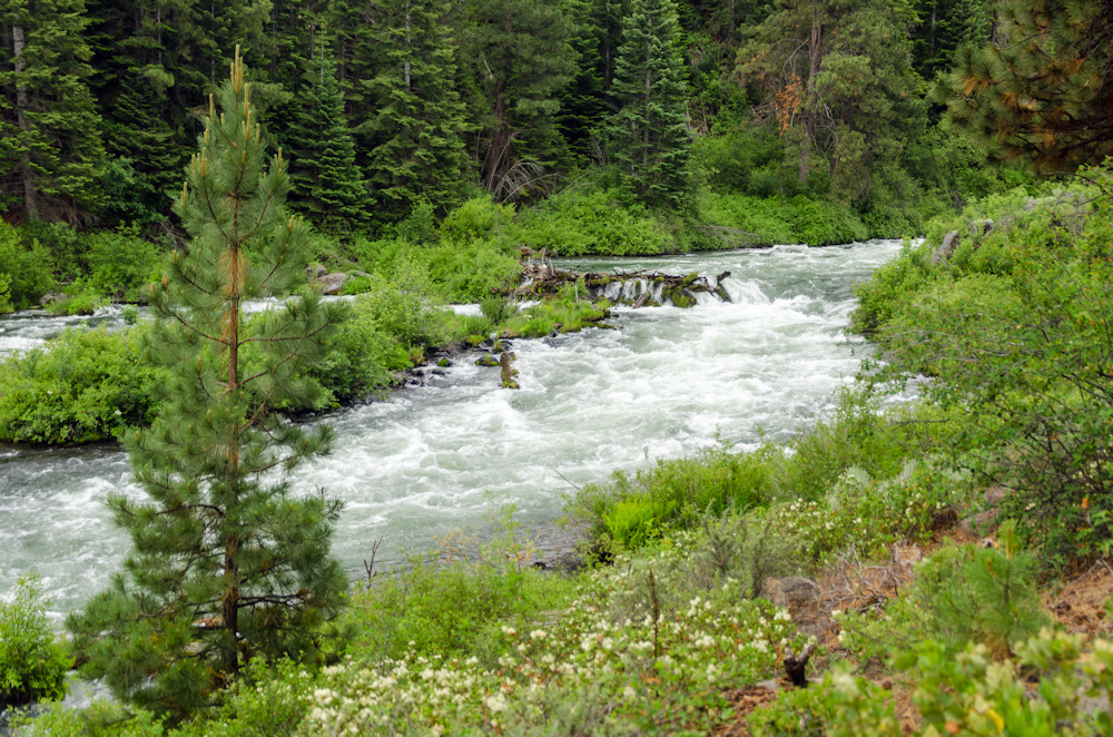 The Deschutes River Conservancy says increased water equity among farmers will allow for better balance in the basin and healthier flows in the Deschutes River and its tributaries