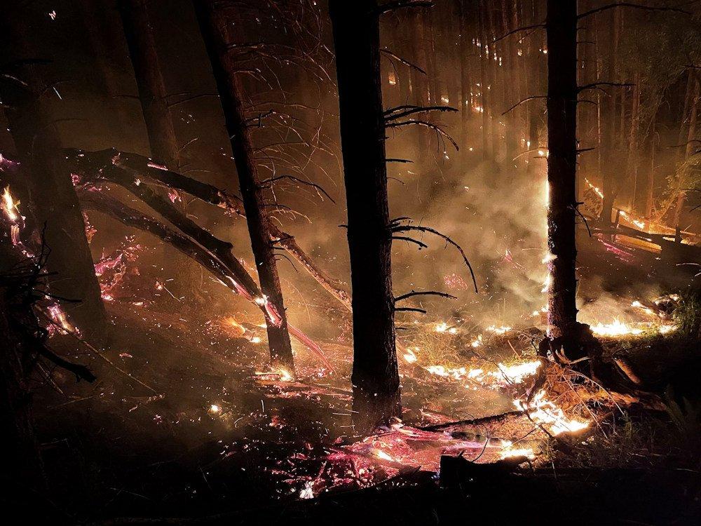 Mehl Creek Fire burns in steep terrain near Elkton late Tuesday