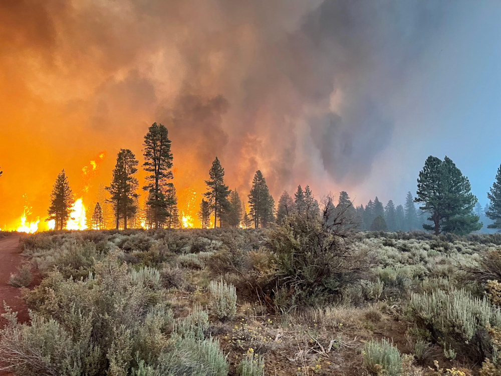 Bootleg Fire burns Saturday, July 10 on the Fremont-Winema National Forest