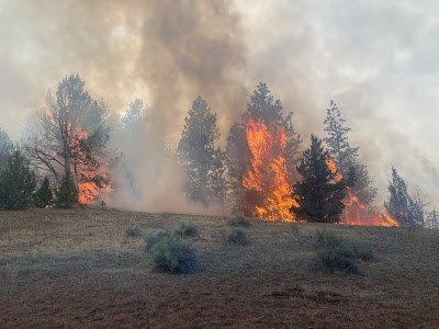 Cottonwood Creek Fire ODF 730