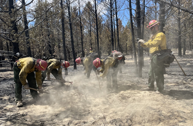 Darlene Fire crews use palm infrared camera to find hot spits in interior and help in mop-up