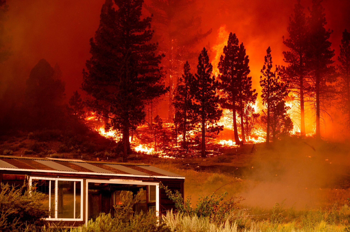 <i>Noah Berger/AP</i><br/>The Tamarack Fire burns in Alpine County