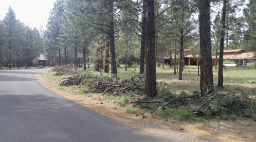 Fuels reduction projects can receive Deschutes County grants