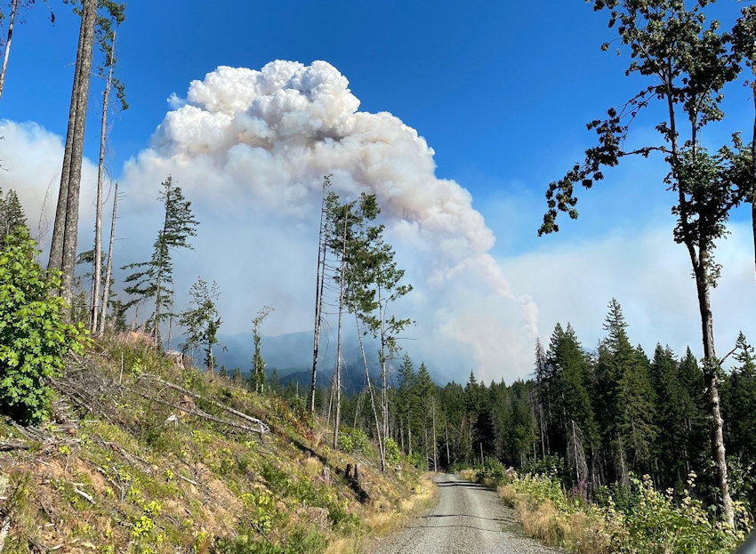 The Gales Fire, part of the Middle Fork Complex, puts up a smoke column in early August, a view from Forest Road 1830 looking east