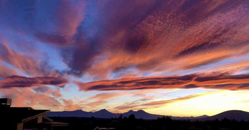 Sunset Shelley Marks 915