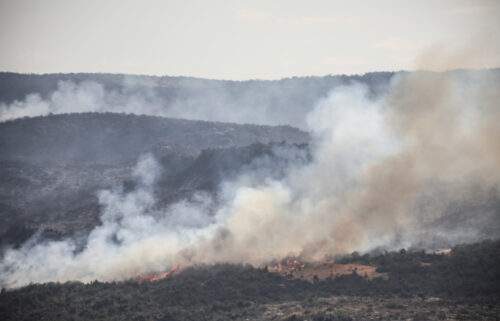 Syria has executed 24 people who were convicted of terrorism charges for igniting last year's devastating wildfires that left 3 people dead and scorched thousands of acres of forests