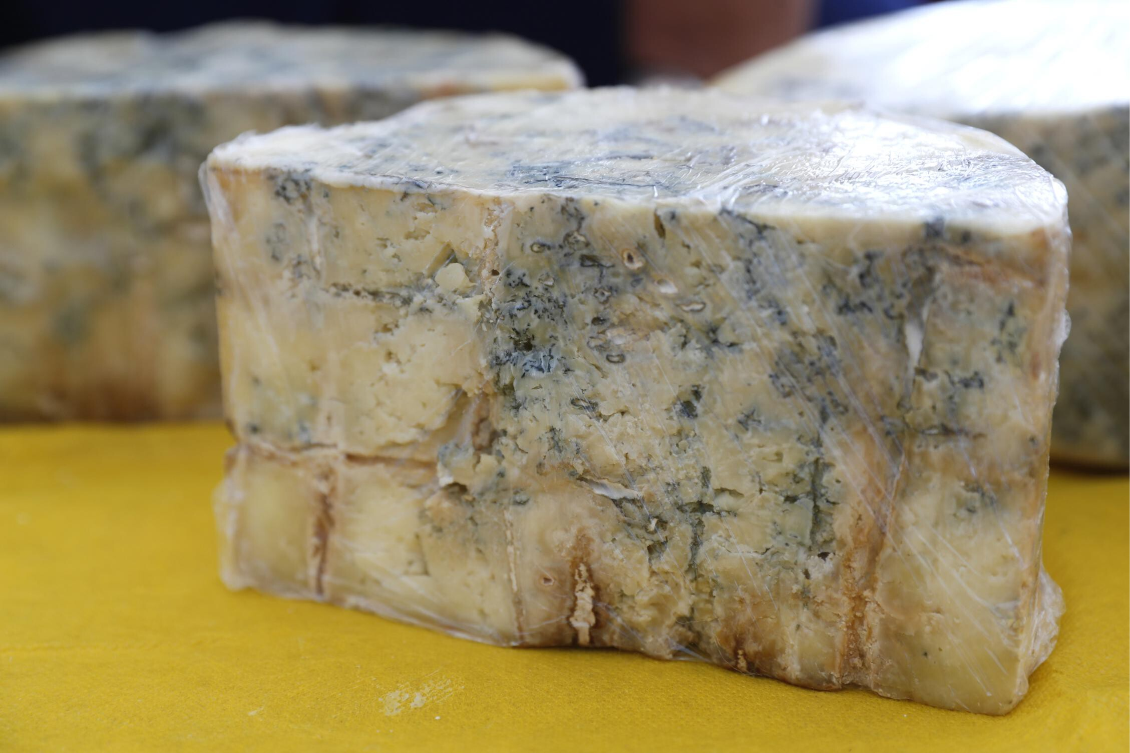 <i>Artyom Geodakyan/TASS/Getty Images</i><br/>Iron Age Europeans enjoyed foods that are still part of our diet today -- like blue cheese and beer -- new research studying ancient poop has shown.